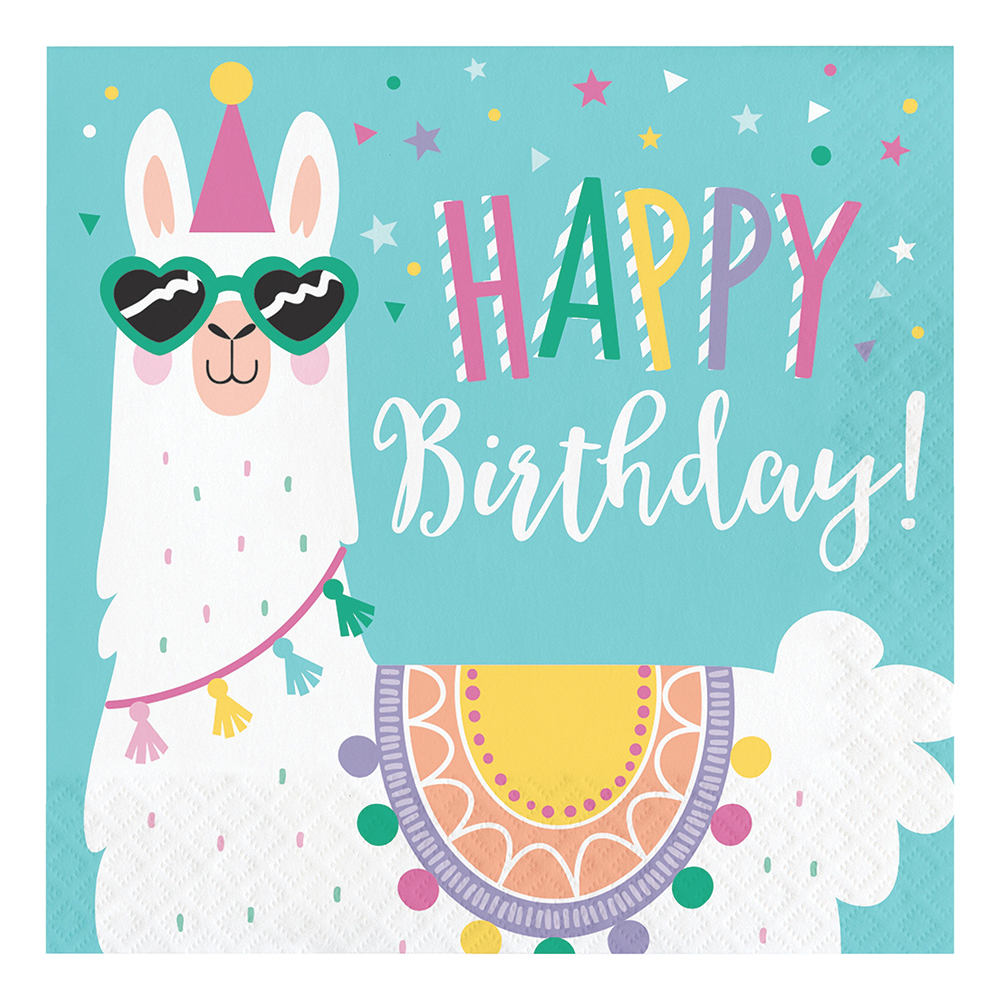 servetter-llama-party-happy-birthday-1.jpg