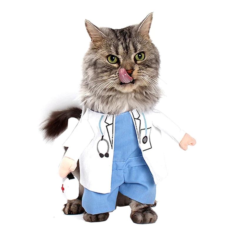 Doktor Maskeraddräkt för Katt/Hund - One size