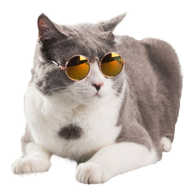 Glasögon till Katt/Hund - Gul