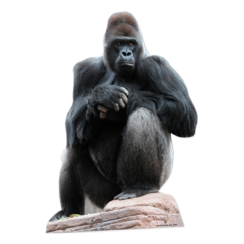 Gorilla Kartongfigur