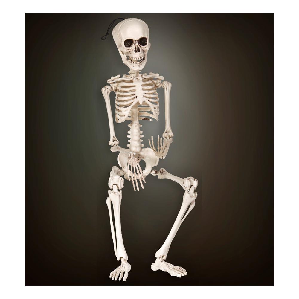 Justerbart Skelett - 40 cm