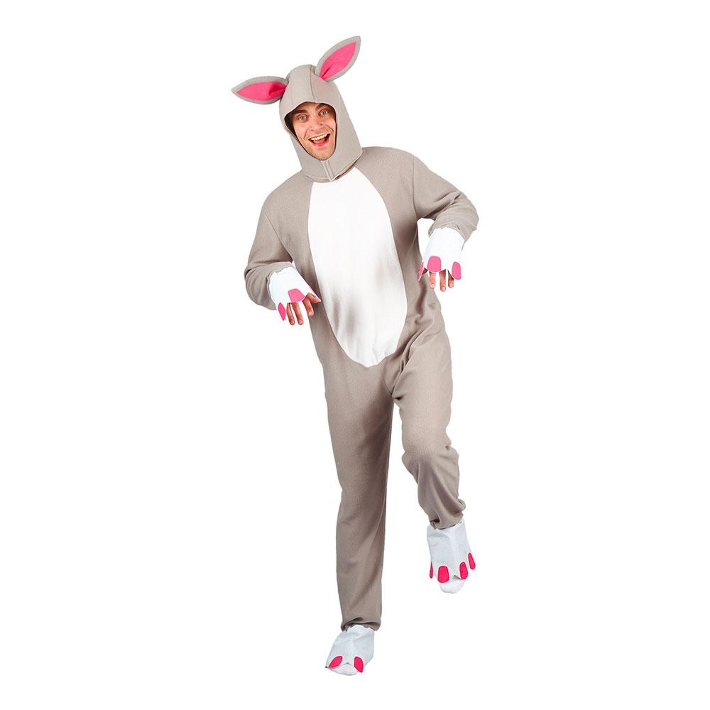 Kanin Grå Maskeraddräkt