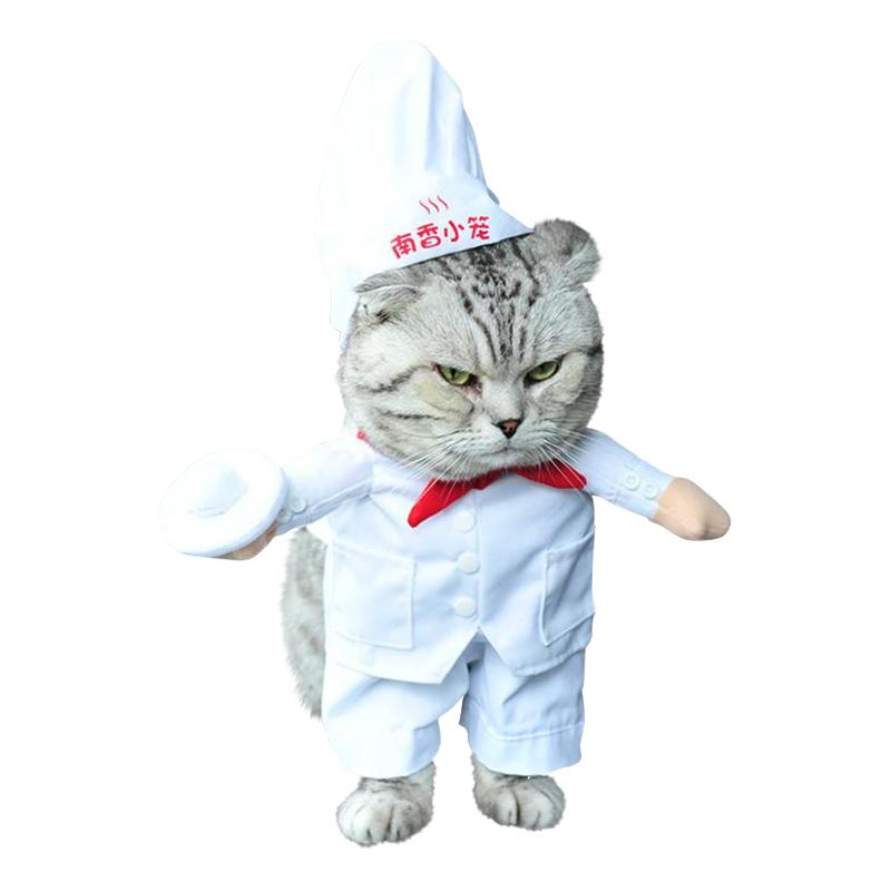 Kock Maskeraddräkt för Katt/Hund - One size