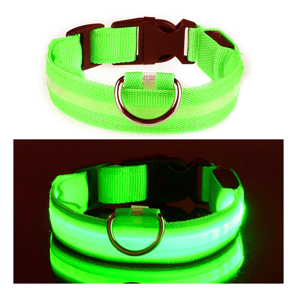 LED Hundhalsband - Grön - Medium