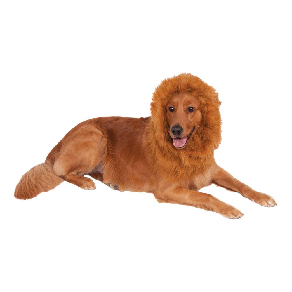 Lejonman för Hundar - One size