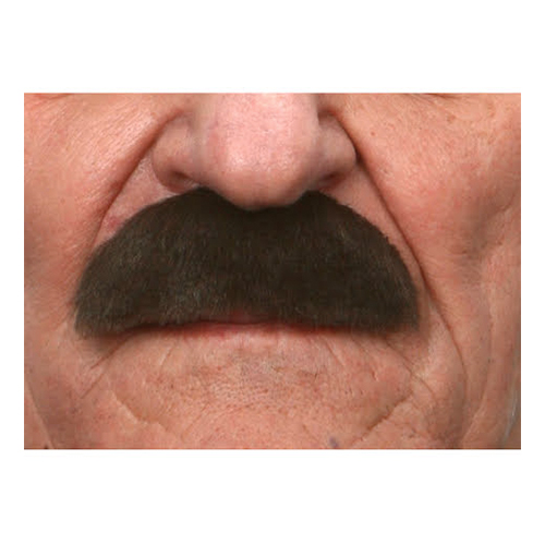 Mustasch Buskig Brun