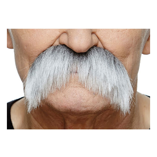 Mustasch Sober Grå