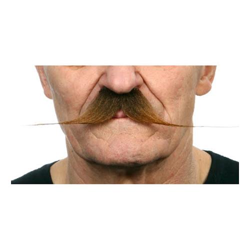 Mustasch Spetsig Brun