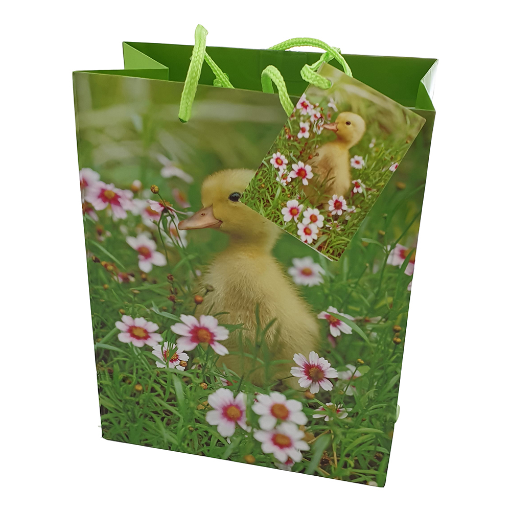 Kyckling-produkter - Presentpåse Påsk med Kyckling - Liten