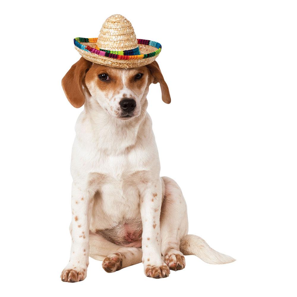 Sombrero för Hundar - Small/Medium